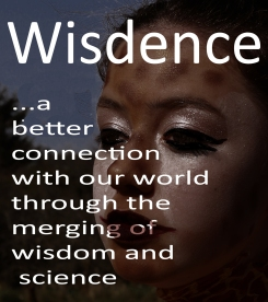 wisdence